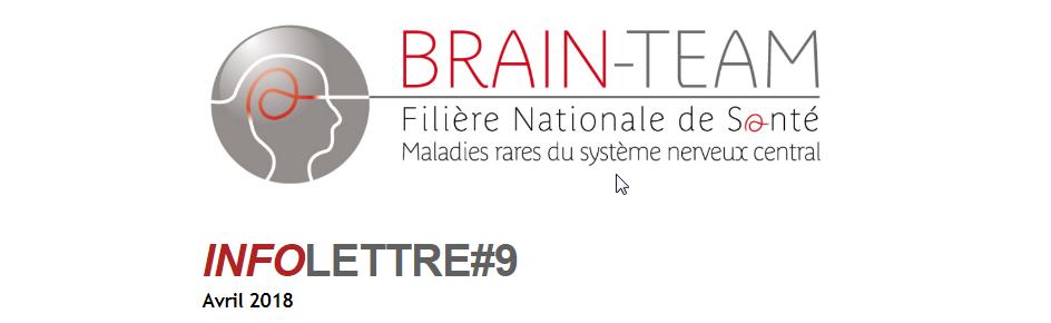Informations intéressantes de notre filière Brain Team