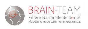Brain team